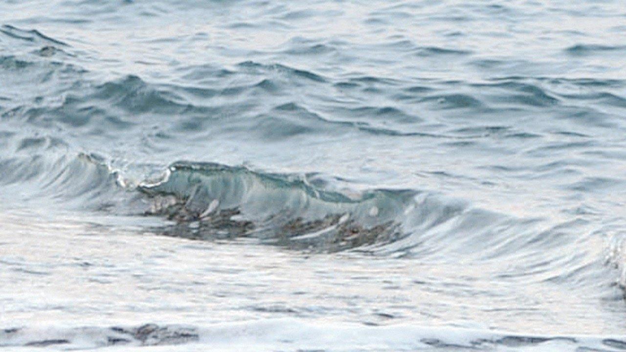 Video: Der Strand von Bodrum